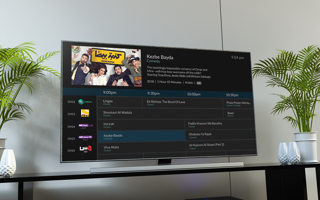 Gracenote Powers Next-Generation TV Viewer Experiences in the Middle East with the Launch of Global Video Data