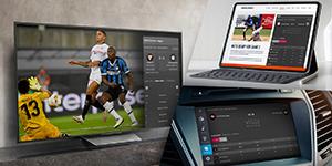 megamenu-global-sports-widgets-300×150